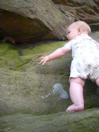 yogi touches rock